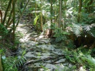 invisible creek